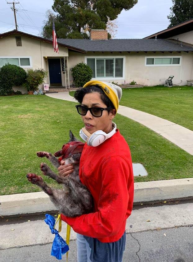 Buscan a una mujer que arrastró a su perro atado a un patinete eléctrico