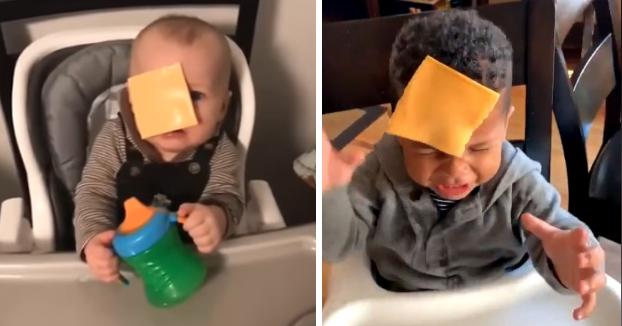 Cheesed Challenge: el polémico reto viral que consiste en tirar lonchas de queso a bebés