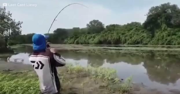 ''¡Corre, Daniel, corre!'': Dos pescadores consiguen atrapar un gran pez y un cocodrilo sale corriendo detrás de él