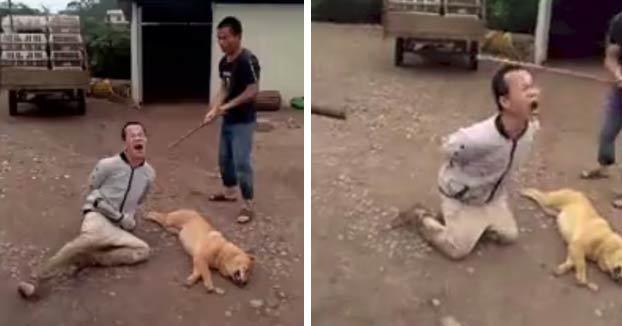Intenta robar un perro para venderlo y los aldeanos le atan las manos y le dan palazos