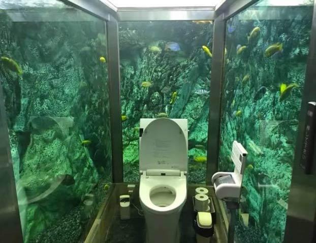 Así es el famoso baño acuario de Japón: Solo para mujeres, rodeado de agua y con cientos de peces mirándote