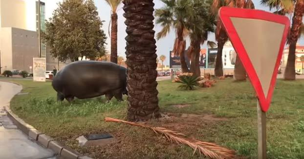 ''¿Qué p*llas es esto, socio? ¡un hipopótamo en la rotonda del Eroski!''