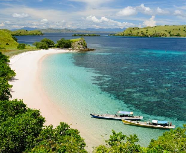 La isla de Komodo se cierra a los turistas porque la gente está robando dragones