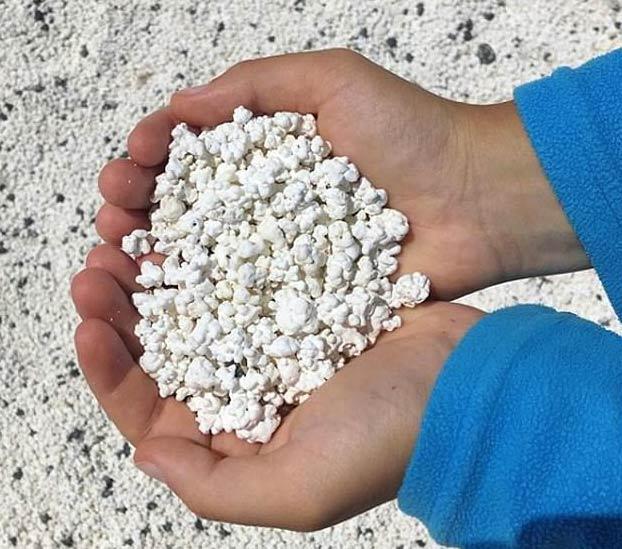 Popcorn Beach, una playa de Fuerteventura que tiene unas pequeñas algas que parecen palomitas