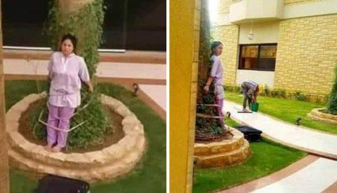 Atan a una empleada del hogar a un árbol como castigo por dejar unos muebles al sol