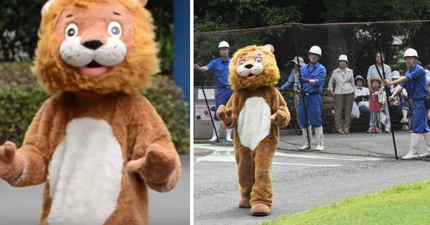Un hombre se disfraza de león para que los empleados del zoo practiquen cómo actuar cuando se escapa uno de verdad