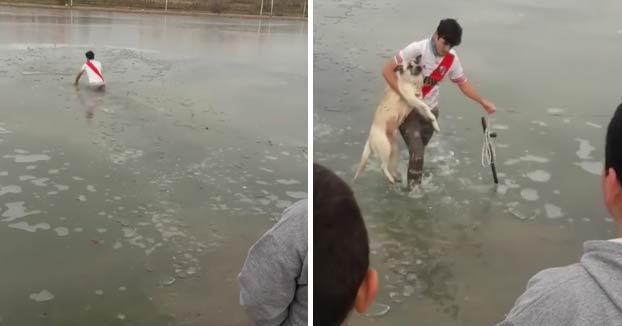Un joven no duda en meterse en un lago congelado para salvar a un perro que se quedó atrapado