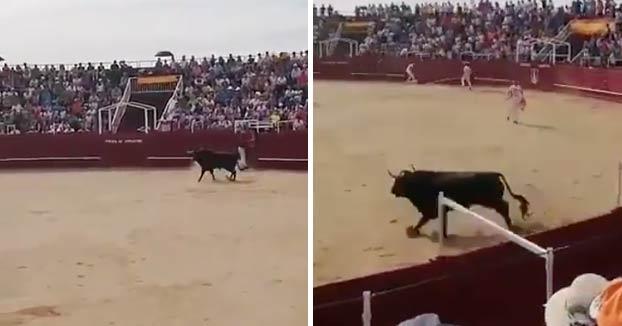 Muere un torilero tras una cogida en la plaza de toros de Benavente