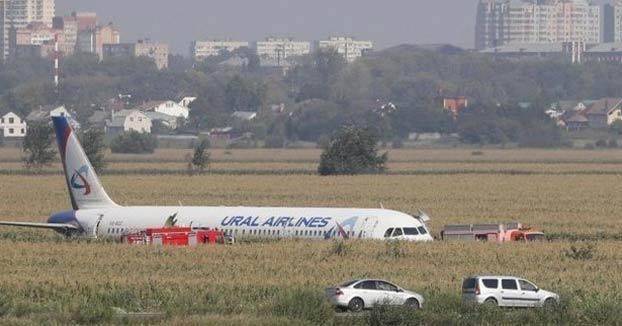 Milagroso aterrizaje de un avión en un campo de maíz cerca de Moscú. Vídeo grabado por uno de los pasajeros