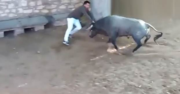 Un joven herido con dos cornadas en el encierro de Tafalla, en Navarra