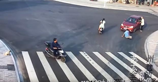 Un perro cruza por el paso de peatones después de que un coche atropellase a un hombre que cruzaba por mitad de la vía