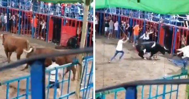 Un toro embiste a un niño tras caerse de la grada en Tavernes de la Valldigna, Valencia