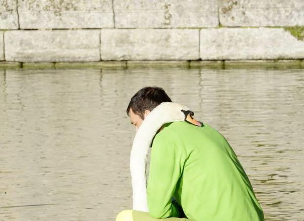 La insólita relación entre un cisne y un jardinero del Monasterio de El Escorial
