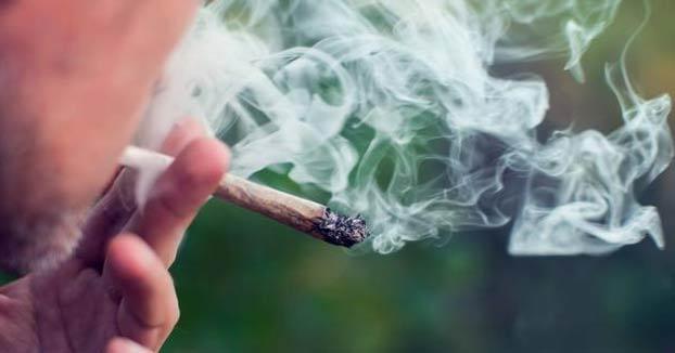 Se busca fumador de cannabis: una empresa paga 2.600 euros al mes por probar y calificar su marihuana