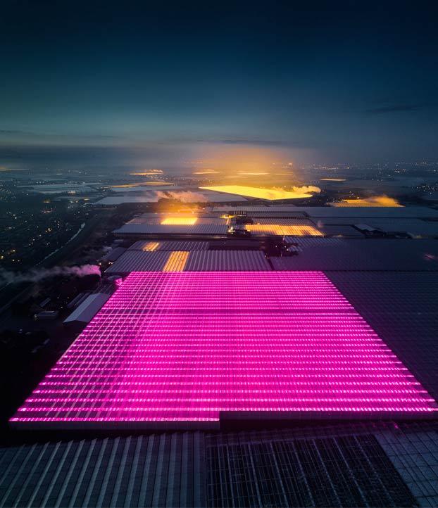 Invernaderos LED en Holanda vistos desde el aire