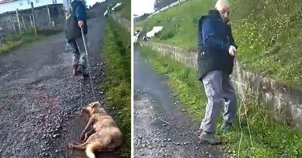 El cazador que disparó y arrastró a su perra en Lugo ha sido identificado y denunciado