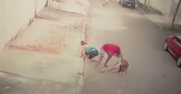 Un joven salva a un niño de 5 años del ataque de un pit bull