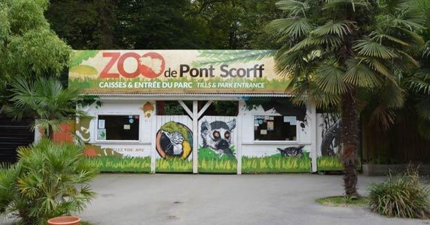Más de 22.000 personas compran un zoo en Francia para liberar a cientos de animales