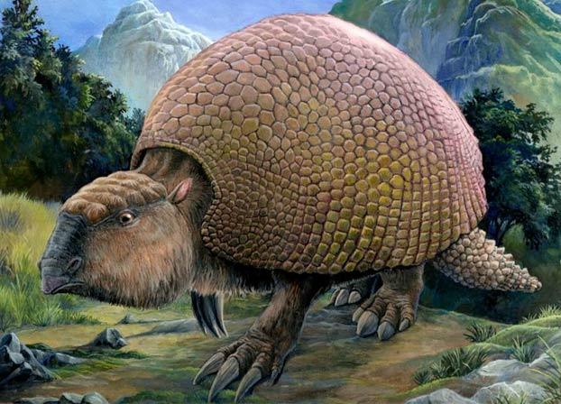 Encuentran en Argentina fósiles de armadillos gigantes