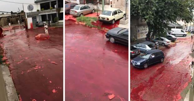 Un barrio argentino es inundado de unos 500.000 litros de sangre animal tras reventarse un tanque de un matadero