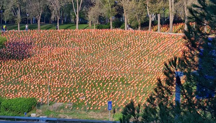 50 voluntarios han colocado 53.000 banderas de España en el parque Roma de Madrid, frente a la M-30
