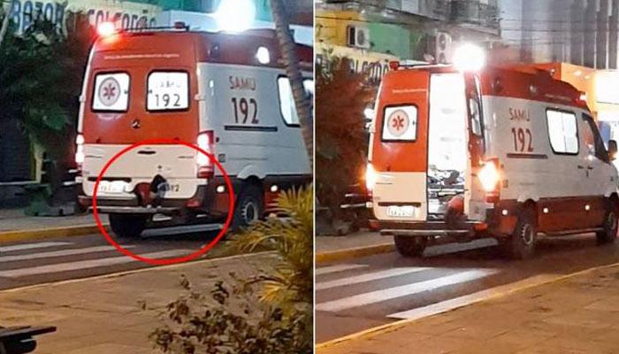 Una perrita se sube al parachoques de una ambulancia para acompañar a su dueño al hospital