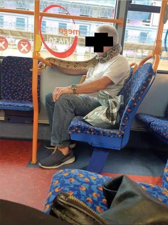 Un hombre lleva una serpiente en el cuello a modo de mascarilla mientras va en el autobús