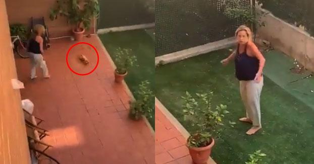 Graba el salvaje maltrato de una vecina a su perro, que lo estampa contra el suelo en Sevilla