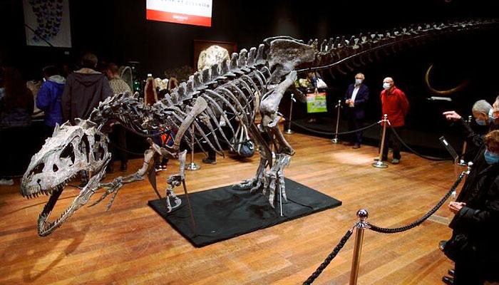 Adjudicado por 3 millones de euros un esqueleto de alosaurio en París