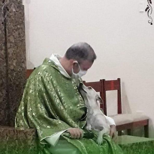 Un sacerdote promueve la adopción de animales abandonados llevando perros, gatos y demás fauna a sus misas