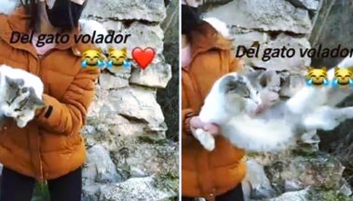Una joven de Granada tira a un gato por un barranco y lo publica en Instagram con la canción ''El gato volador''