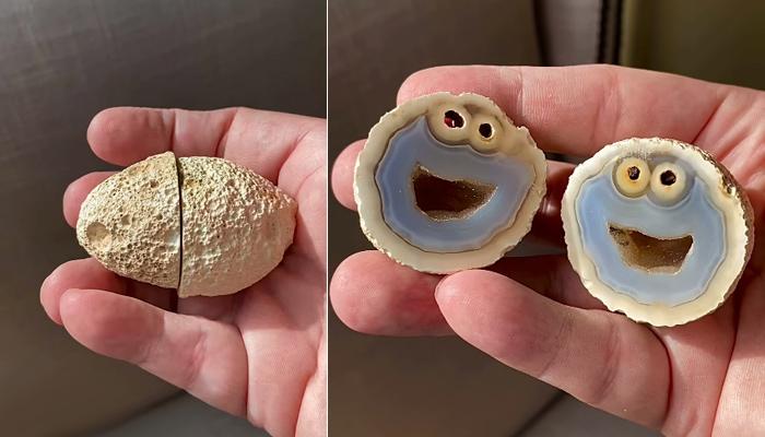 El geólogo Mike Bowers encuentra una roca volcánica con el rostro del Monstruo de las galletas