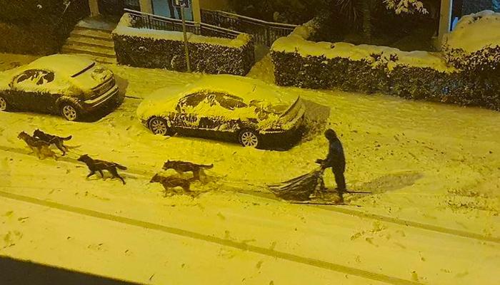 Francisco Javier y sus cinco huskies recorrieron las nevadas calles del madrileño barrio de Hortaleza en trineo
