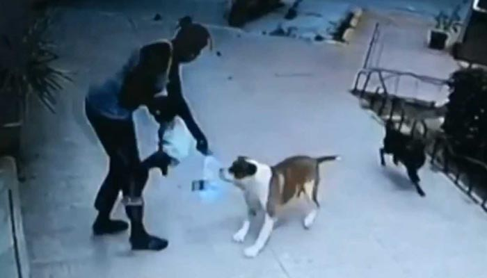 Una veterinaria salva a una niña de dos años del ataque de un perro en Murcia